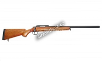 VSR-10 Wood, AGM